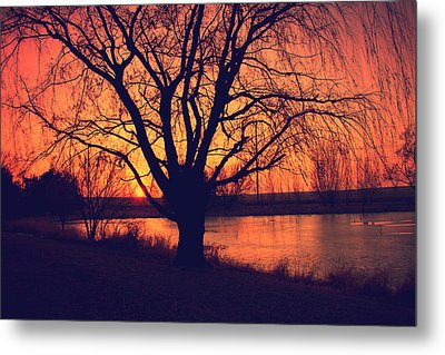 Sunset On Willow Pond Metal Print by Kathy M Krause