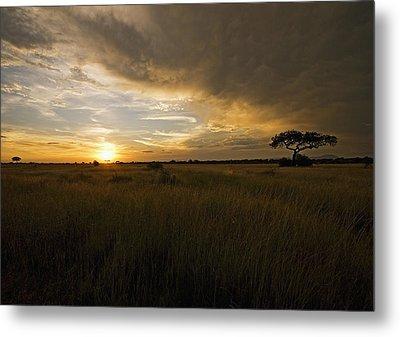 sunset over the Serengeti plains Metal Print