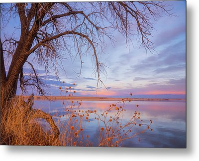 Metal Print featuring the photograph Sunset Overhang by Darren White