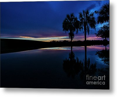 Metal Print featuring the photograph Sunset Palms by Brian Jones