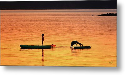 Sunset Play Metal Print by Rick Lawler