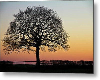 Metal Print featuring the photograph Sunset Silhouette by Clare Bambers