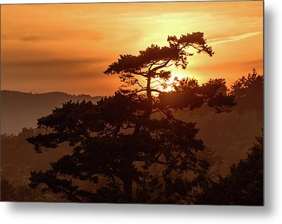 Sunset Silhouette Metal Print by Keith Boone