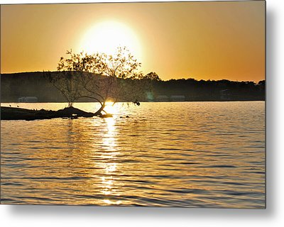 Metal Print featuring the photograph Sunset Silhouette by Teresa Blanton