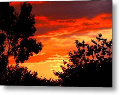 Sunset Sky Metal Print by Duke Brito
