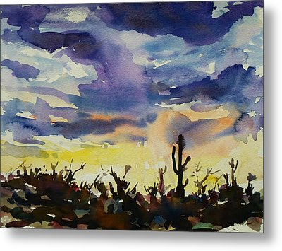 Sunset Sonora Metal Print by Xueling Zou