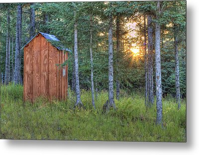 Sunset Through Spruce Metal Print by Michele Cornelius
