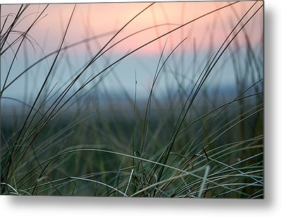 Sunset  Through The Marsh Grass Metal Print by Spikey Mouse Photography