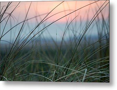 Sunset  Through The Marsh Grass Metal Print