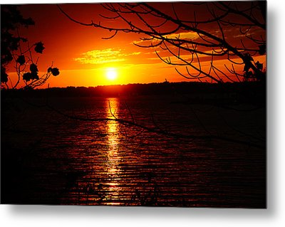 Sunset Through The Trees Metal Print by Mike Murdock