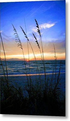 Sunset Thru The Sea Oats At Delnor Wiggins Metal Print by Robb Stan