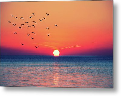 Sunset Wishes Metal Print