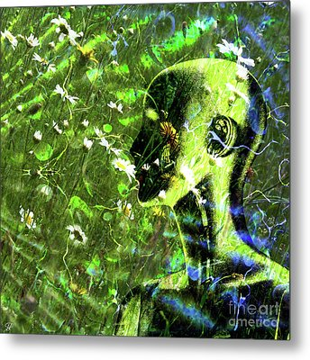 Metal Print featuring the photograph Sunshine And Daisies by LemonArt Photography