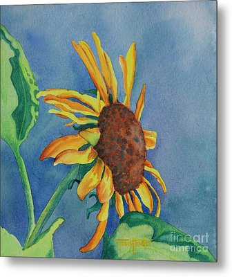 Sunshine On My Shoulders Metal Print by Tracy L Teeter