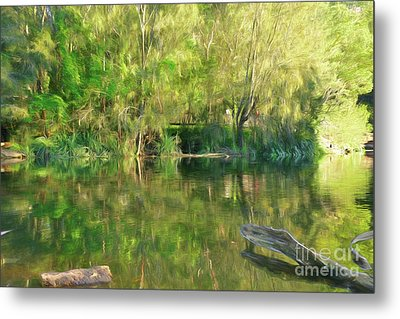 Metal Print featuring the photograph Sunshine On Nature By Kaye Menner by Kaye Menner