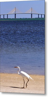 Sunshine Skyway Bridge With White Egret Metal Print by Rose  Hill