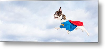 Super Hero Dog Flying Through Sky Metal Print
