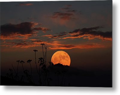 Super Moon And Silhouettes Metal Print