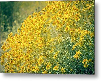 Superbloom Golden Yellow Metal Print