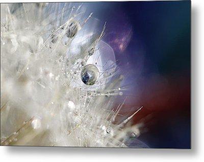 Supernova Metal Print by Amy Tyler