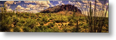 Superstition Mountain And Wilderness Metal Print
