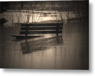 Surrender Metal Print by Cathy  Beharriell
