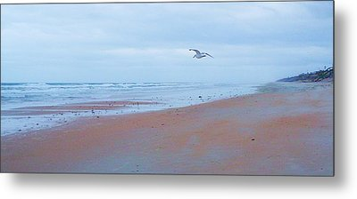Suspended  Metal Print by Cheryl Waugh Whitney