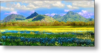Sutter Buttes In Spring Metal Print