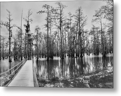 Swamp Dock Black And White Metal Print by Ester  Rogers