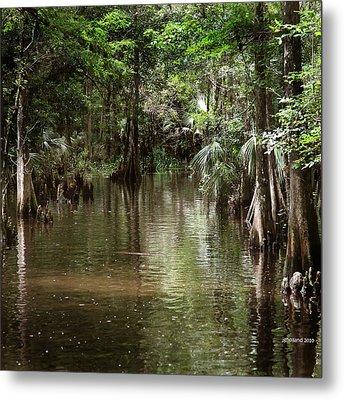Swamp Road Metal Print