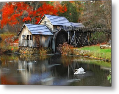 Swan At Mabry Mill Metal Print by Mary Timman