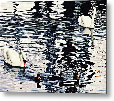 Metal Print featuring the photograph Swan Family On The Rhine by Sarah Loft