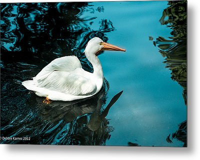 Metal Print featuring the photograph Swan Lake by Debbie Karnes