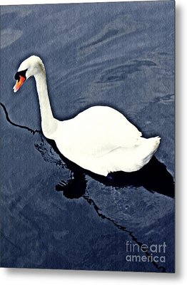 Metal Print featuring the photograph Swan On The Rhine by Sarah Loft