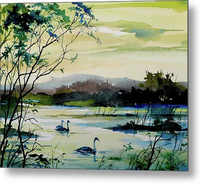 Swan Pond Metal Print by Art Scholz