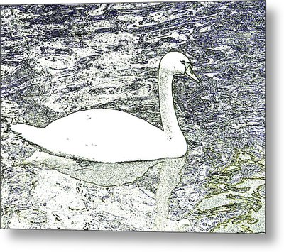 Metal Print featuring the photograph Swan Sketch by Manuela Constantin