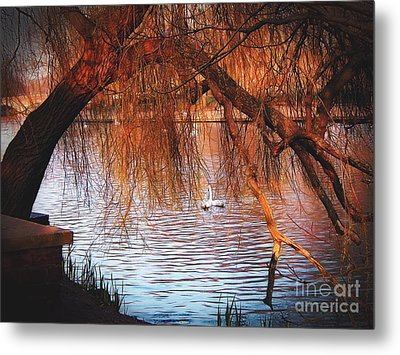 Metal Print featuring the photograph Swans On The Avon by Sue Melvin