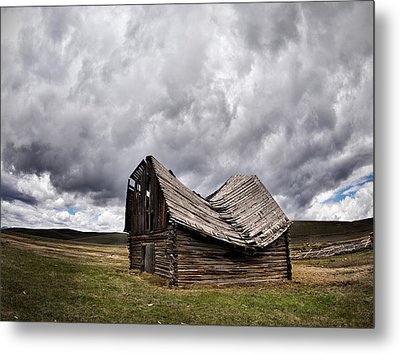 Sway Back Metal Print by Leland D Howard