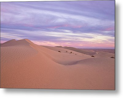 Metal Print featuring the photograph Sweeping Dunes At Sunset by Patricia Davidson