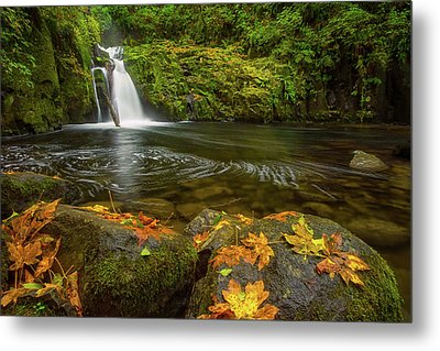 Metal Print featuring the photograph Sweet Creek Falls In Autumn by Patricia Davidson