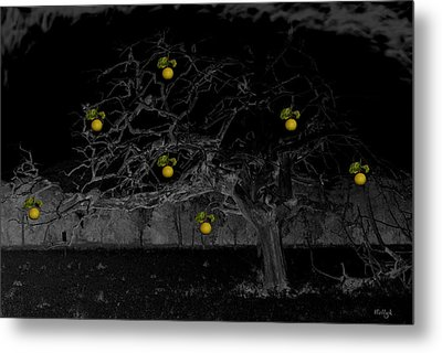 Sweet Fruit Metal Print