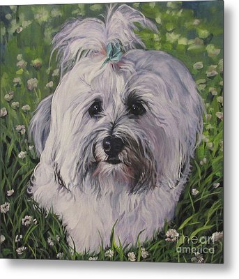 Metal Print featuring the painting Sweet Havanese Dog by Lee Ann Shepard