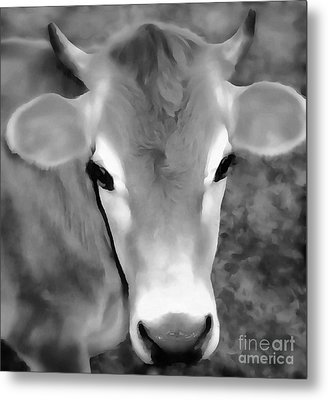 Metal Print featuring the painting Sweet Jersey Girl - Jersey Cow by Janine Riley