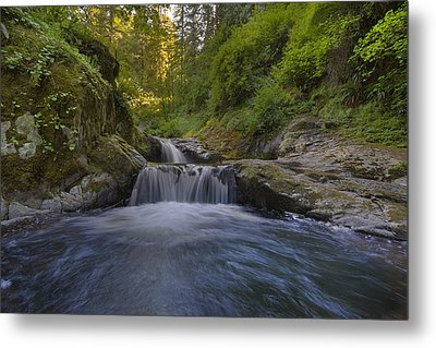 Sweet Little Waterfall Metal Print by David Gn
