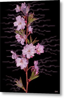 Sweet Smell Of Spring Metal Print by Debra     Vatalaro