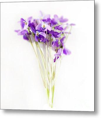 Sweet Violets Metal Print