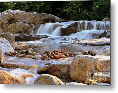Swift River  Metal Print by Catherine Reusch Daley