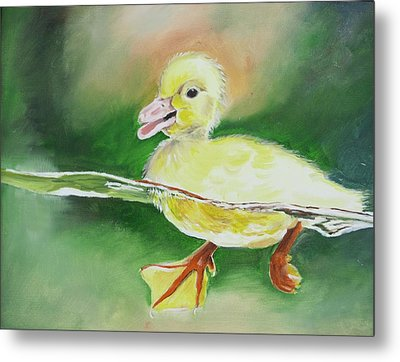 Swimming Duckling Metal Print