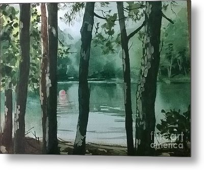Swimming Hole Metal Print by Elizabeth Carr