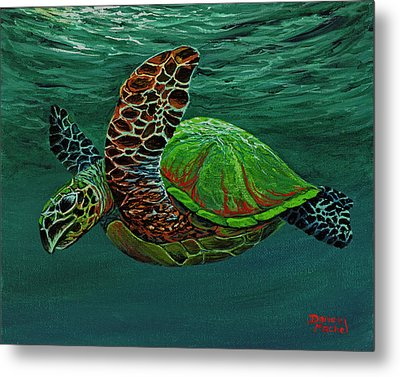 Swimming With Aloha Metal Print by Darice Machel McGuire